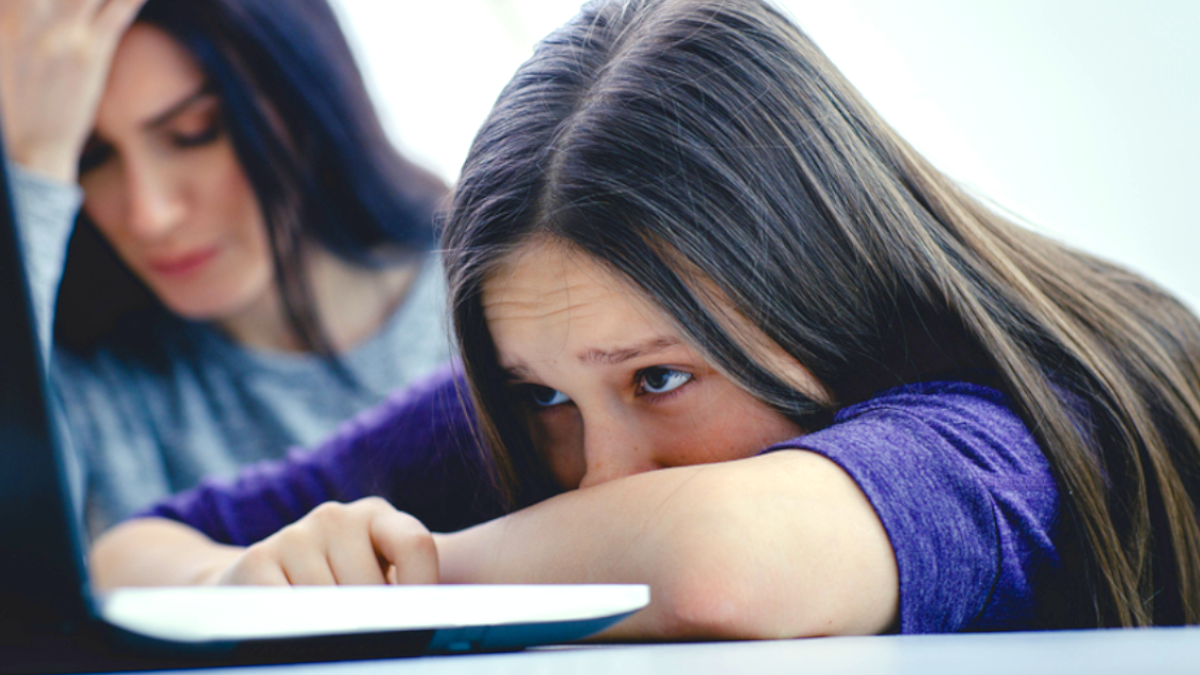 What is cyber-bullying? and how do counsellors assist bullied youth?